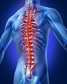 Lower Back pain blog image